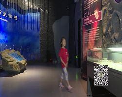 欢乐岛20200919